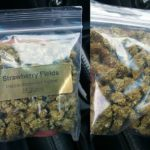 3 Ounces of Bud at $500-0014-1.jpg