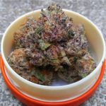 Purple Urkle-purpleurkle.jpg