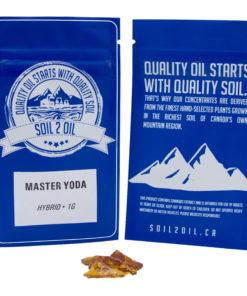 Master Yoda Shatter